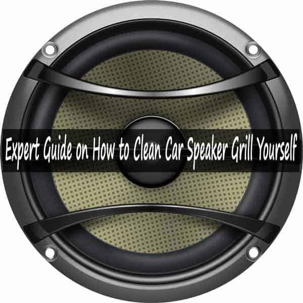 Clean Car Speaker Grill