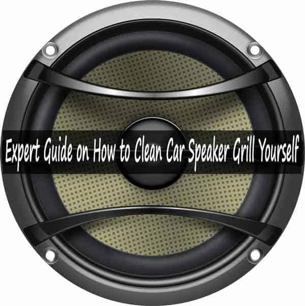 Clean Car Speaker Grill