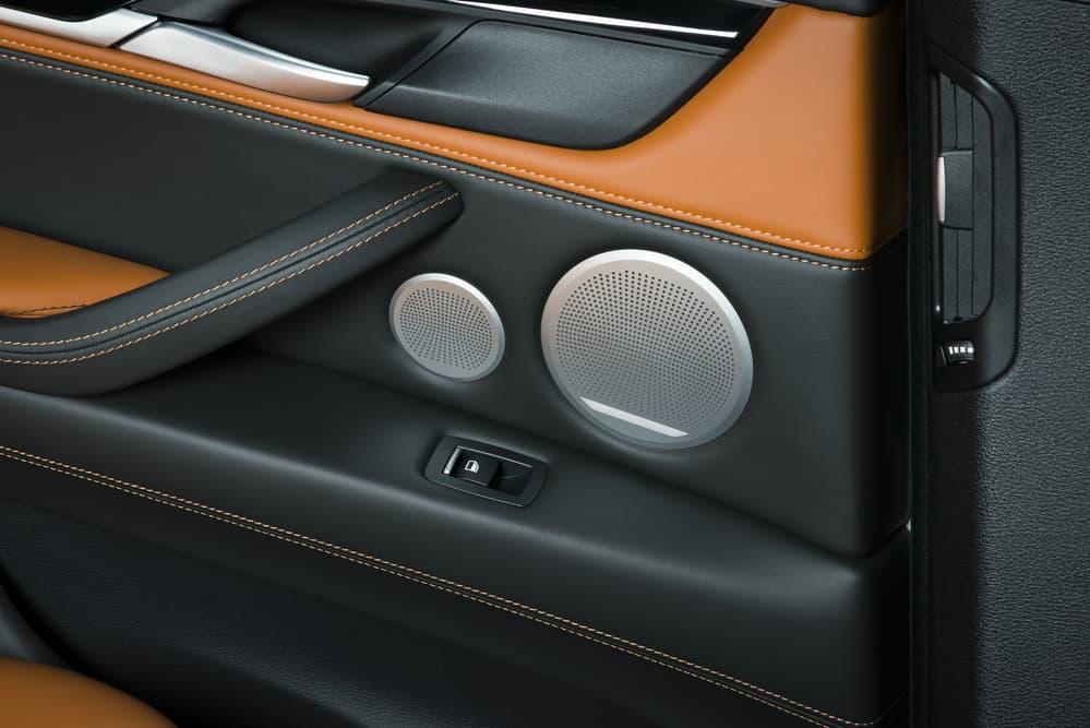 car door with speaker